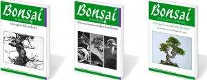 Bonsaicursus ebooks