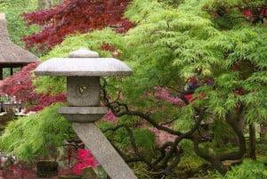 Japanse ornamenten tuin Den Haag