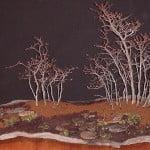 bonsai bos koriaanse haagbeuk